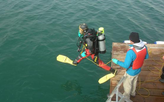 scientific_diving_2